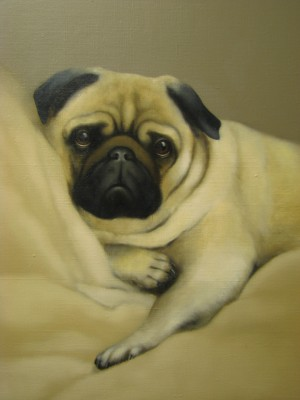 """Pug"", oil on canvas"